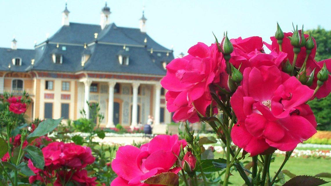 Wyjątkowość Pałacu Tarnowskich w Tarnobrzegu